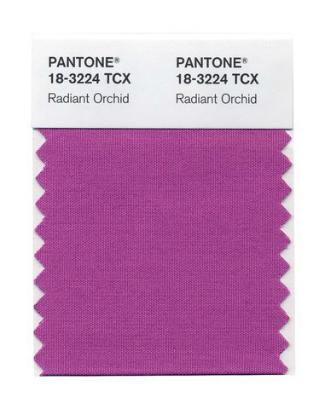 PANTONE CARD resize