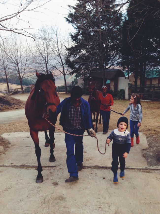 HORSES KIDS WWW.BROOKEEVA.COM